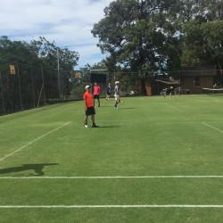 Grasscourts_3