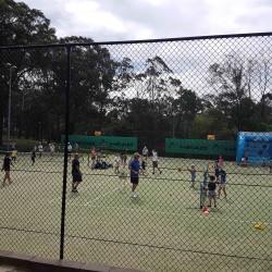 Maincourts_2
